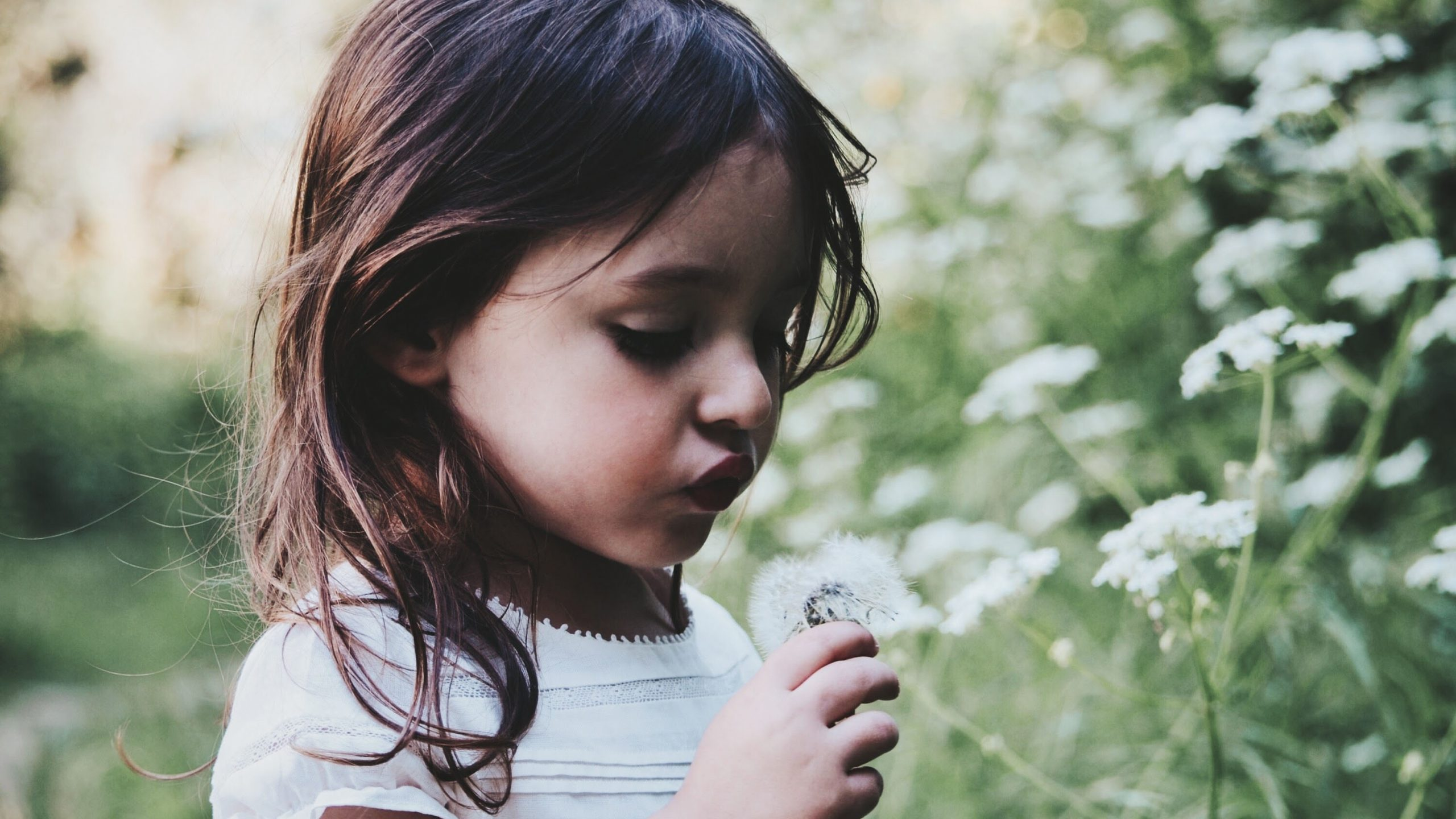 A child holding a dandelion