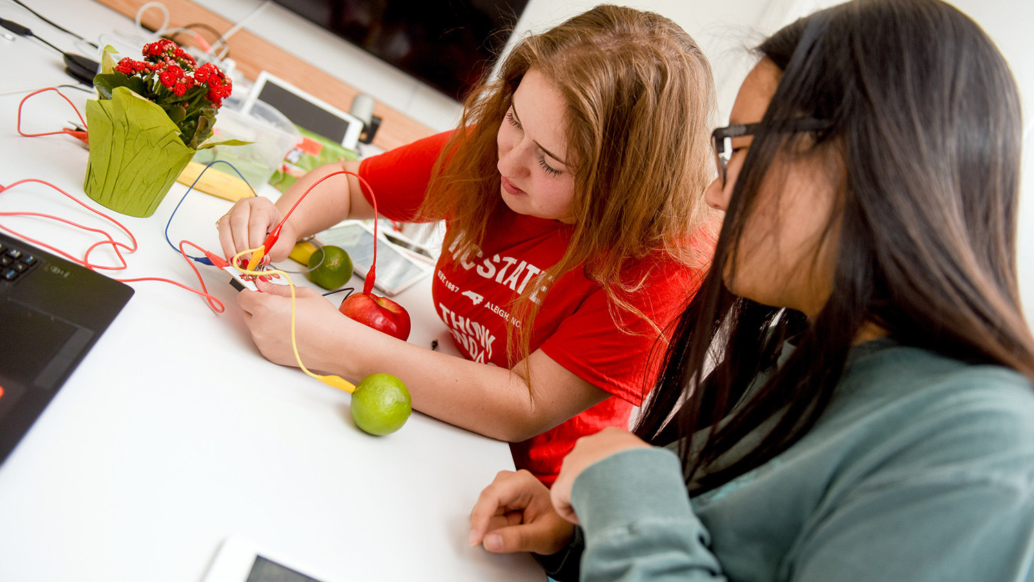 Students in METRC doing an experiment with apples.