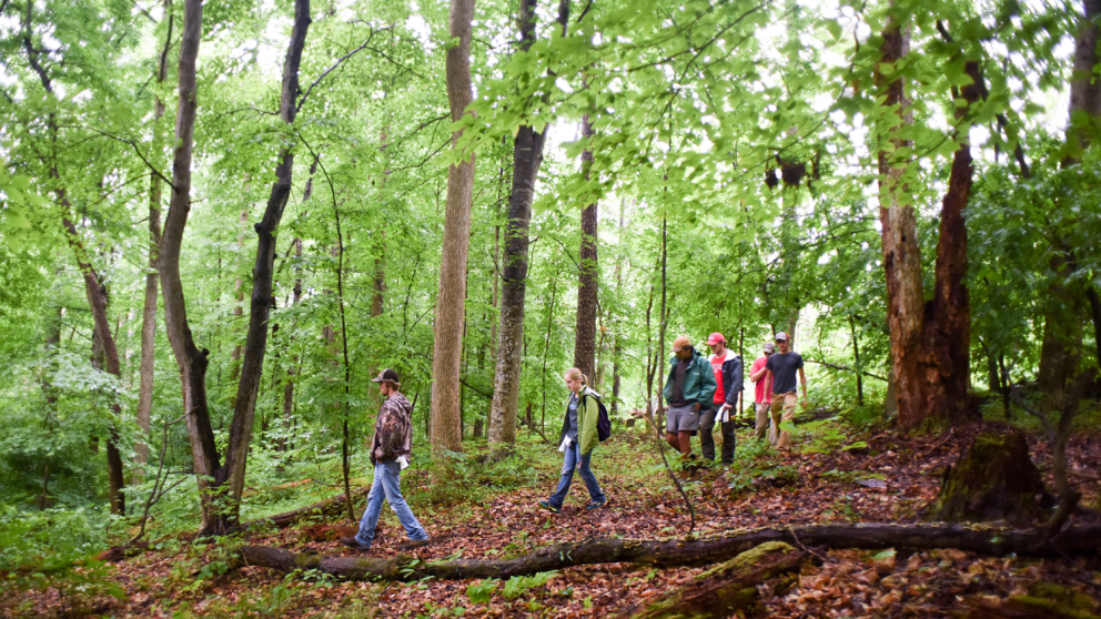 Students participating in outdoor education.