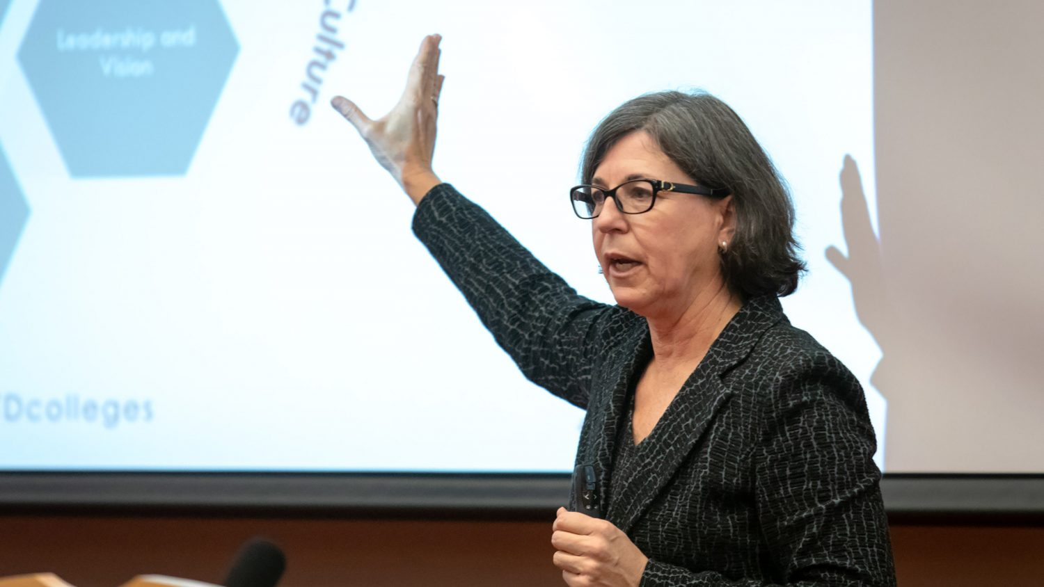 A photo of Karen A. Stout at the 2018 Dallas Herring Lecture